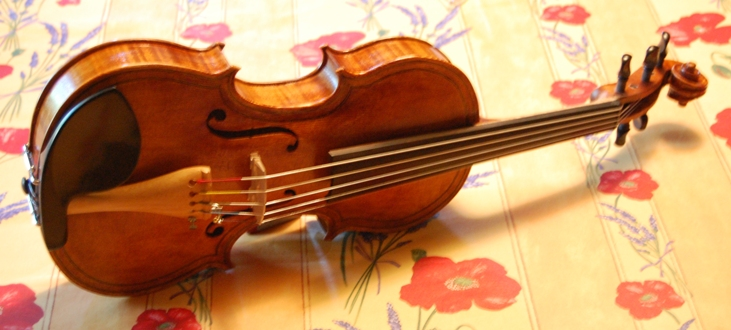 Five String Fiddles