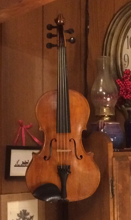 "Wide 14"" five-string viola."