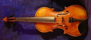 five string viola